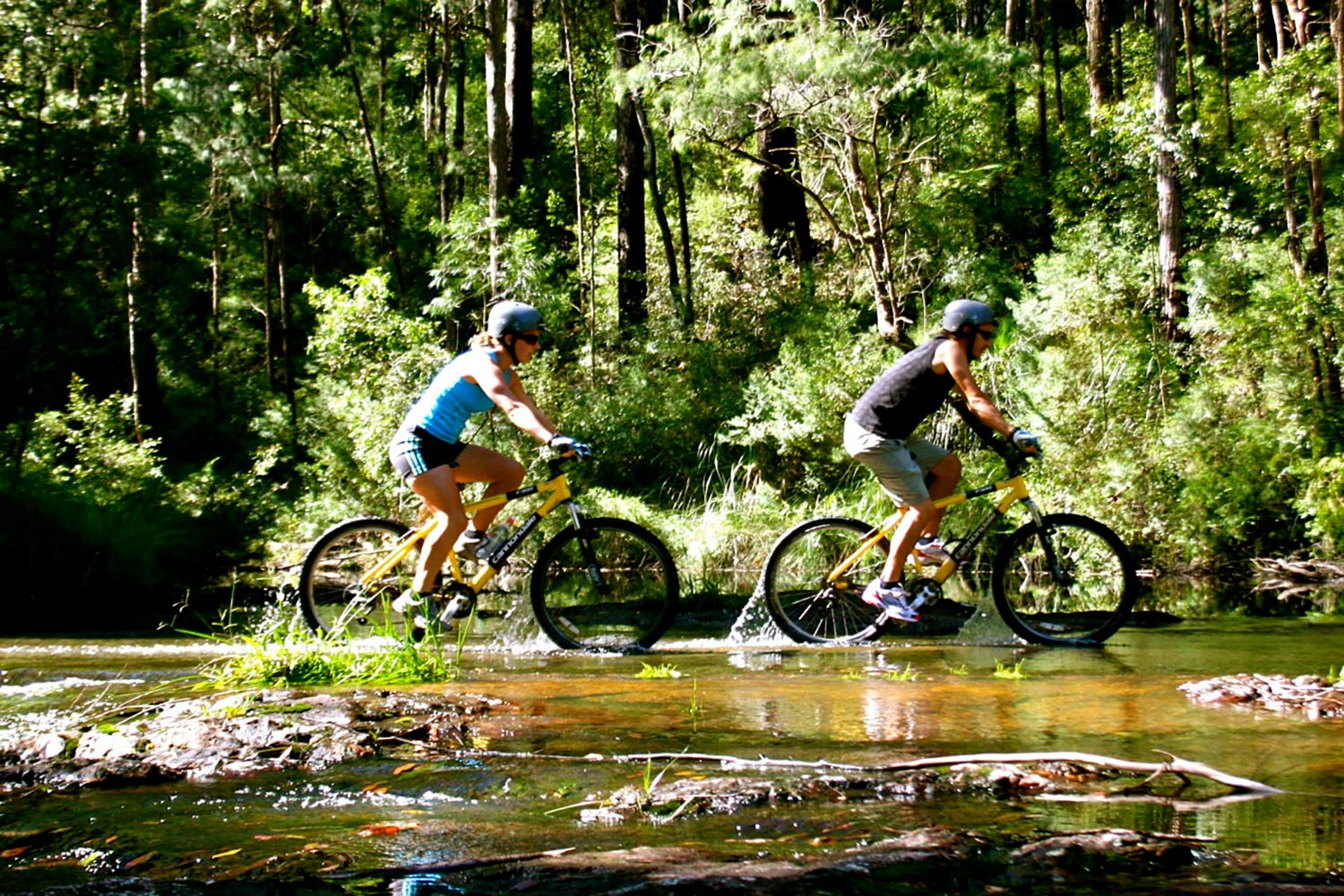 Byron hinterland accommodation - things to do